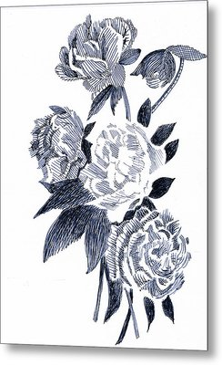 Roses Metal Print by Robbi  Musser