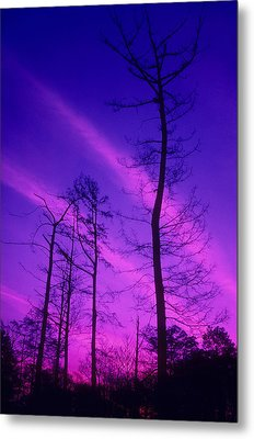 Rosy Fingers Of Dawn Metal Print by Gerard Fritz