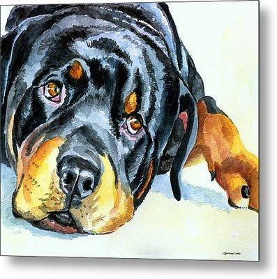 Rottweiler Metal Print by Lyn Cook