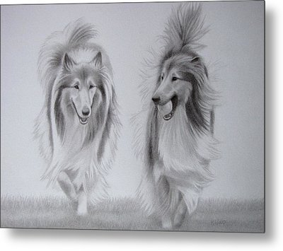 Rough Collie Sisters Metal Print by Karen Wood