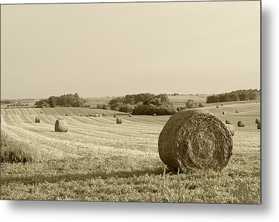 Metal Print featuring the photograph Round Bales by John Hix