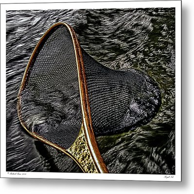 Metal Print featuring the photograph Royal Net by Richard Bean