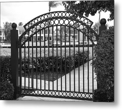 Royal Palm Gate Metal Print by Rob Hans