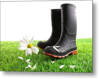 Rubber Boots With Daisy In Grass Metal Print by Sandra Cunningham
