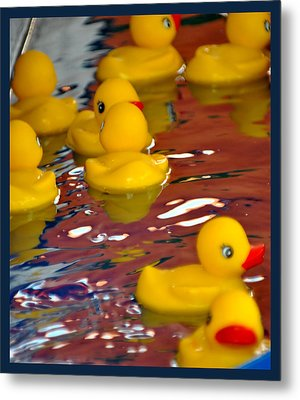 Metal Print featuring the photograph Rubber Duckies by Laura DAddona