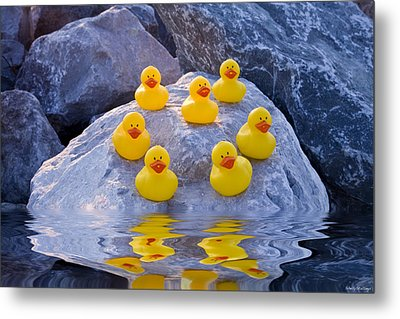 Metal Print featuring the photograph Rubber Ducks In The Wild by Shelly Stallings
