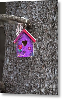 Metal Print featuring the photograph Rubicund.. by Nina Stavlund