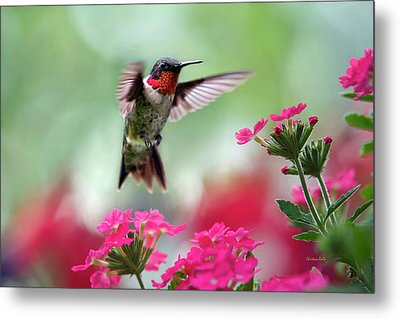 Ruby Garden Jewel Metal Print by Christina Rollo