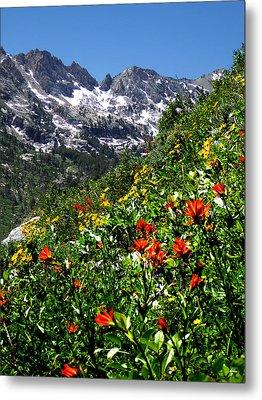 Ruby Mountain Wildflowers - Vertical Metal Print
