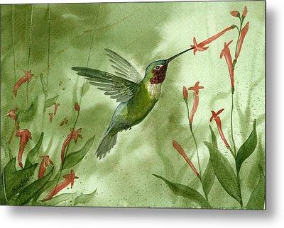 Ruby Throated Hummingbird Metal Print by Sean Seal