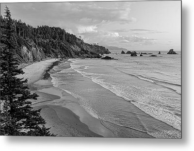 Rugged Beauty Metal Print by Don Schwartz