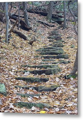 Metal Print featuring the photograph Rugged Path by Alan Raasch