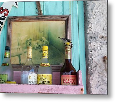 Metal Print featuring the photograph Rum Shack Bananaquit by Mary-Lee Sanders