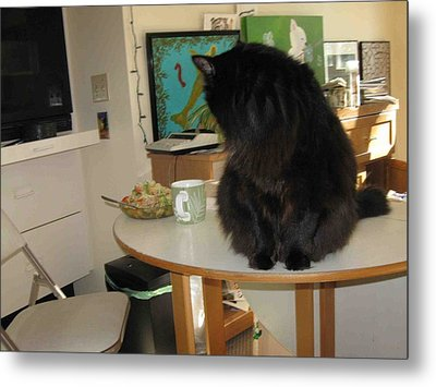 Rumbles Looks At Lunch Metal Print by AJ Brown