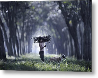 Rumpin Metal Print by Andre Arment