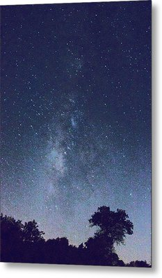 Running Dog Tree And Galaxy Metal Print