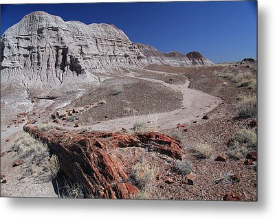 Metal Print featuring the photograph Runoff Obstacle by Gary Kaylor