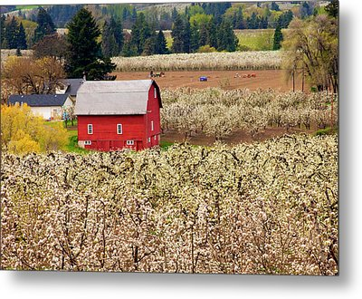 Rural Color Metal Print by Mike  Dawson