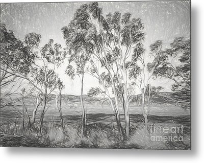 Rural Landscape Pencil Sketch Metal Print by Jorgo Photography - Wall Art Gallery