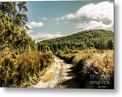 Rural Paths Out Yonder Metal Print