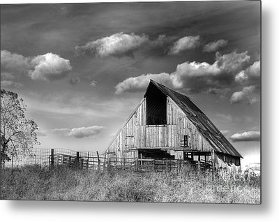 Rural Metal Print by Thomas Danilovich