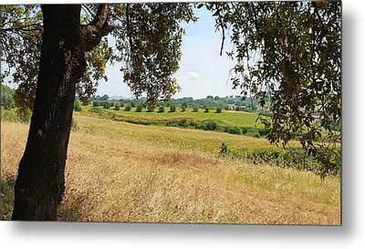 Metal Print featuring the photograph Rural Tuscany by Valentino Visentini
