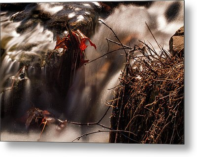 Rushing Water In Forest Park Metal Print by Garry McMichael