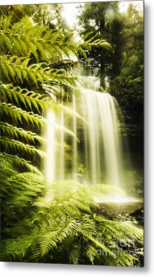 Russell Falls Background Metal Print by Jorgo Photography - Wall Art Gallery