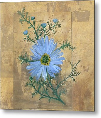 Russias Chamomile Metal Print by Carrie Jackson