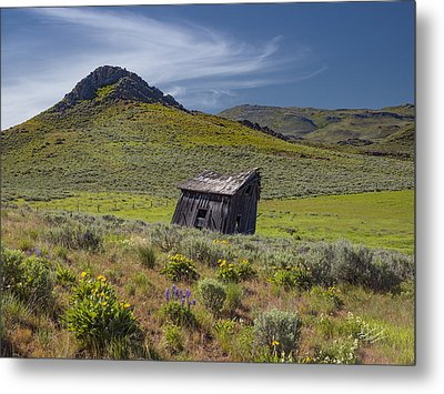 Rustic And Weathered Metal Print by Leland D Howard