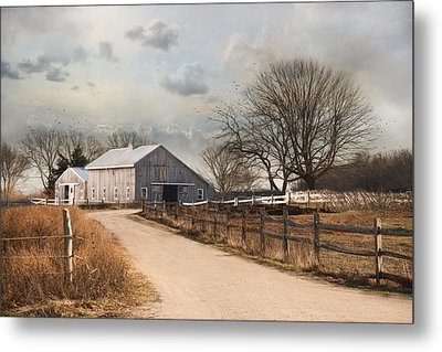 Metal Print featuring the photograph Rustic Lane by Robin-lee Vieira