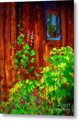 Rustic Summer Shed Metal Print by Christine S Zipps