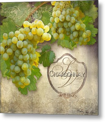 Rustic Vineyard - Chardonnay White Wine Grapes Vintage Style Metal Print