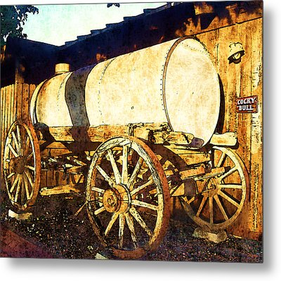 Rustic Warrior Metal Print