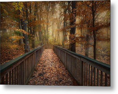 Metal Print featuring the photograph Rustic Woodland by Robin-Lee Vieira