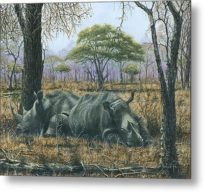 Sabi Sand Siesta Metal Print by Richard Harpum