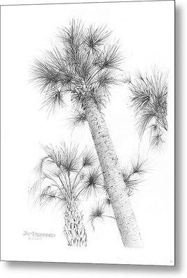 Sable Cabbage Palm Metal Print
