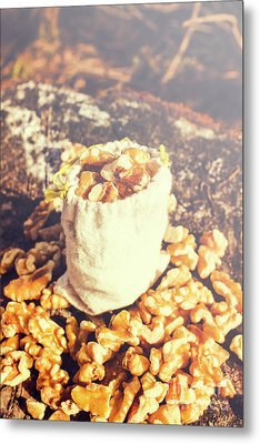 Sack Of Country Walnuts Metal Print