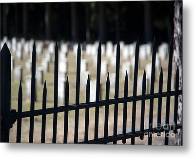 Sackets Harbor Military Cemetery Metal Print by Fred Lassmann