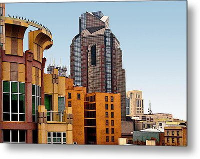 Metal Print featuring the photograph Sacramento Bird Go Round by Larry Darnell