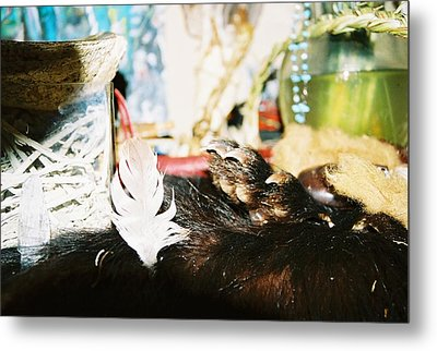Metal Print featuring the photograph Sacred Bear Claw Medicine by Kicking Bear  Productions