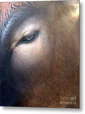 Metal Print featuring the photograph Sacred Cow 5 by Randall Weidner