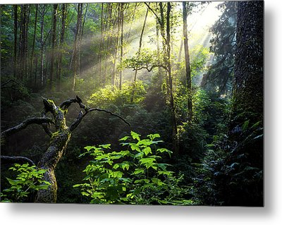 Sacred Light Metal Print