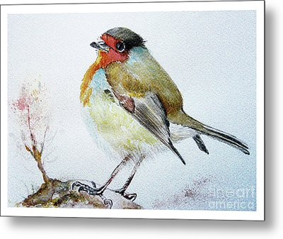 Sad Robin Metal Print by Jasna Dragun