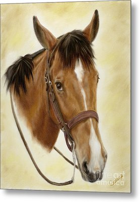 Metal Print featuring the painting Safe Passage by Cathy Cleveland