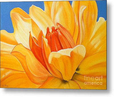 Saffron Splendour Metal Print by Colleen Brown