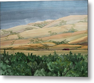 Sage Brush Field Metal Print by Bethany Lee
