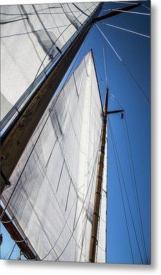 Sail Away Metal Print by Karol Livote