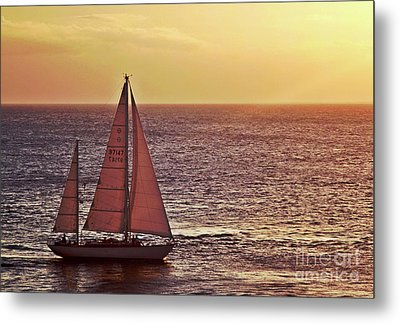 Sail Away Metal Print by Maria Arango