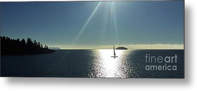 Metal Print featuring the photograph Sail Free by Victor K